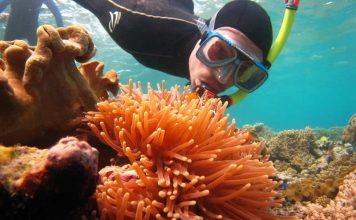 Australia - Queensland - Great Barrier Reef