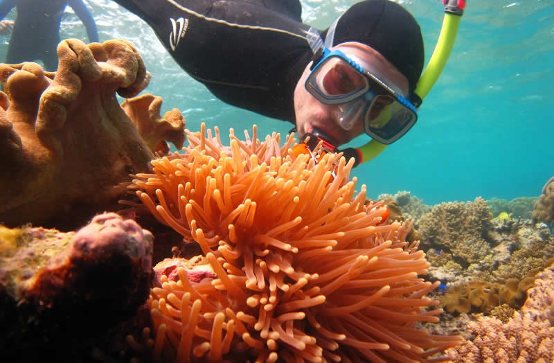 Australia - Queensland - Great Barrier Reef | Australian Travel and Activity Community - Go For Fun
