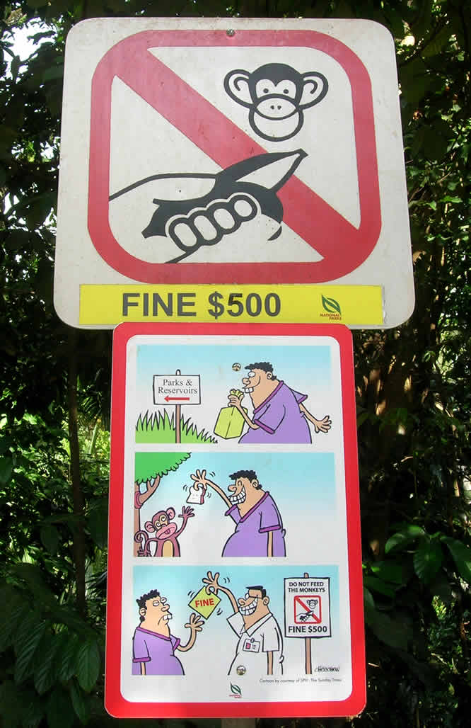 "A ""do not feed the monkeys"" sign at the Bukit Timah Nature Reserve, Singapore"