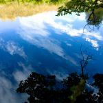 Kyneton-Botanical-Gardens-day-trip-MelbourneWP_20170326_14_23_43_Pro__highres_e