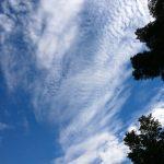 Kyneton-Botanical-Gardens-day-trip-MelbourneWP_20170326_14_32_33_Pro__highres_e