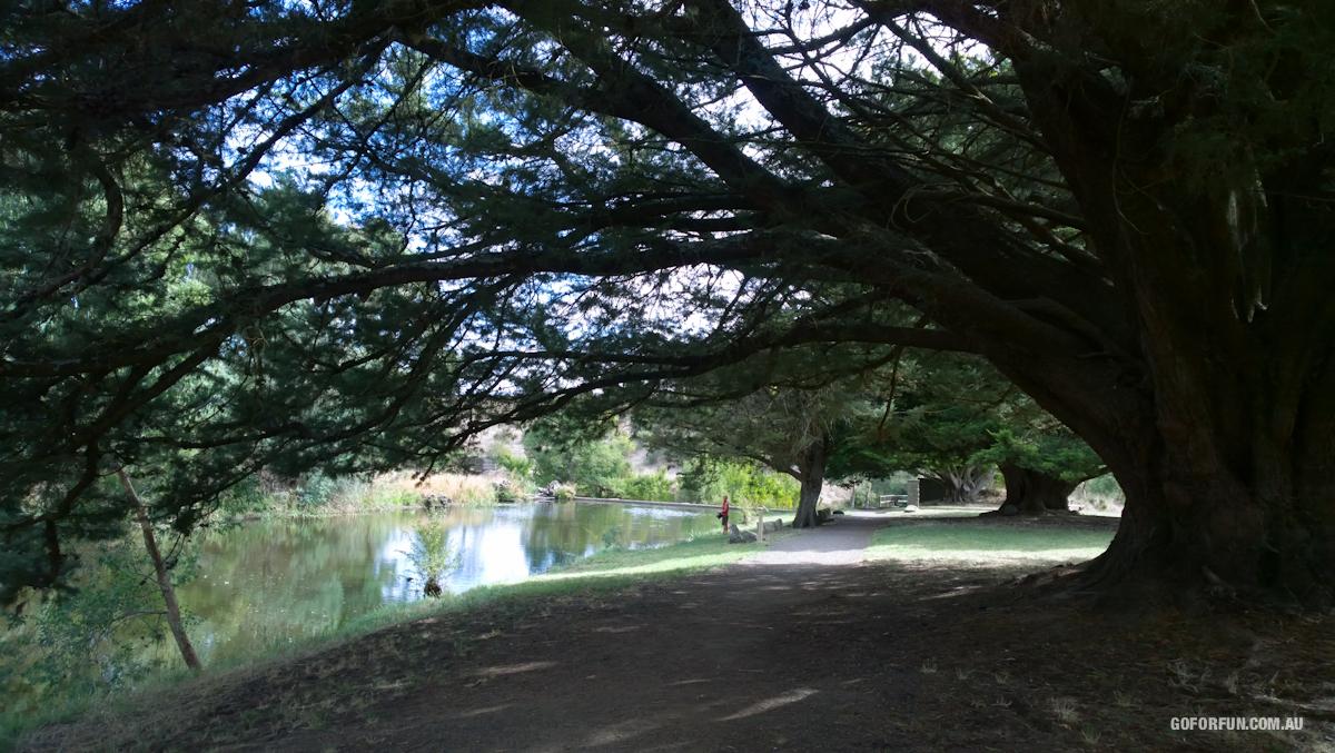 Kyneton-Botanical-Gardens-day-trip-MelbourneWP_20170326_15_05_47_Pro__highres_e