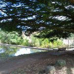 Kyneton-Botanical-Gardens-day-trip-MelbourneWP_20170326_15_11_52_Pro__highres_e