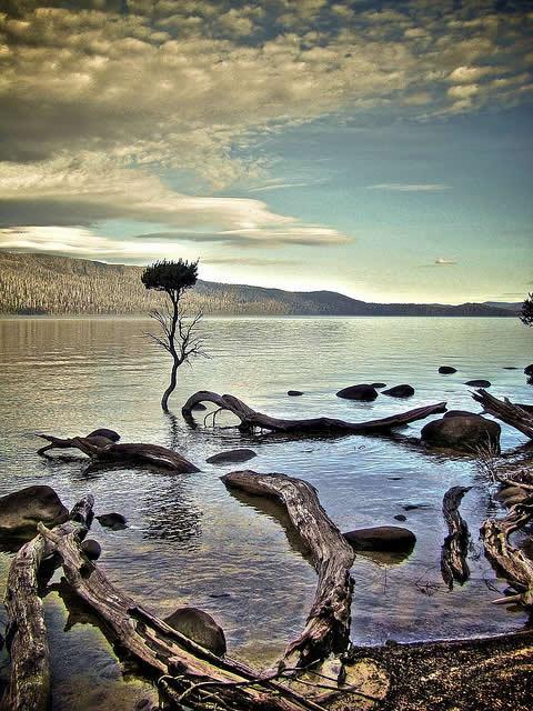 Lake St Clair, Overland Track, Tasmania