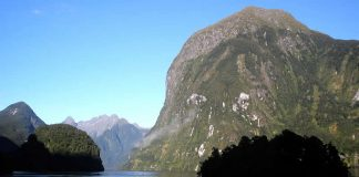 New Zealand - Lions Head - Hall - Arm - Doubtful Sound