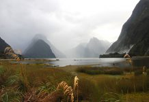 Milford Sound, New Zealand - Travel New Zealand for Australians