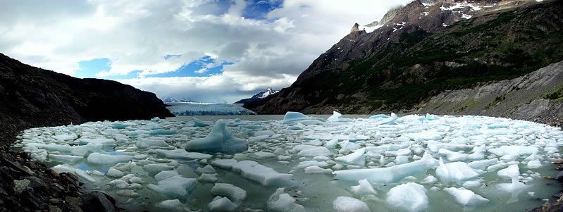 Icebergs calved by Grey Glacier (seen in the background),  Torres del Paine National Park, Chile