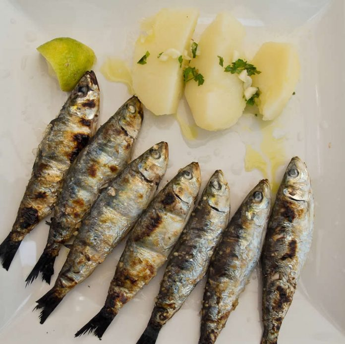 Portugal - Faro food - Fish