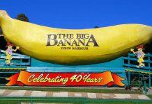 Queensland - Big Banana - Coffs Harbour