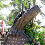 Singapore - Butterfly Park and Insect Kingdom - Sentosa