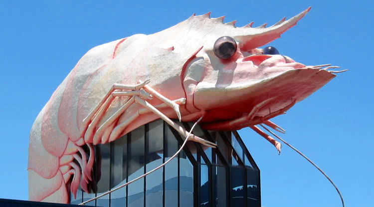 The Big Prawn - Ballina - NSW - Australia | Australian Travel & Photography Inspiration - Go For Fun
