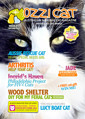 Ozzi Cat Magazine - Australian National Cat Magazine - Subscribe & Get Your Copy Today!