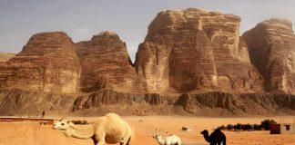 Travel - Jordan - Jordaania - Wadi Rum - Desert