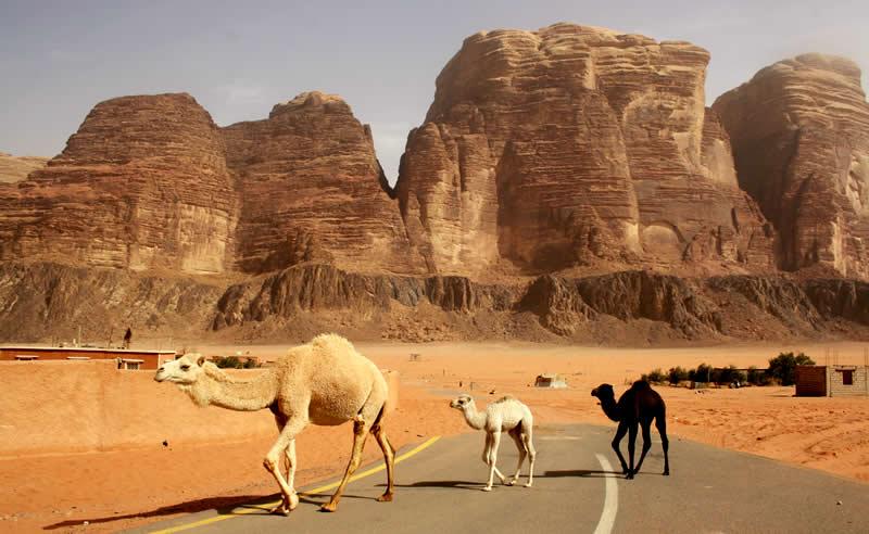 Travel - Jordan - Jordaania - Wadi Rum - Desert | Australian Travel & Photography Inspiration - Go For Fun