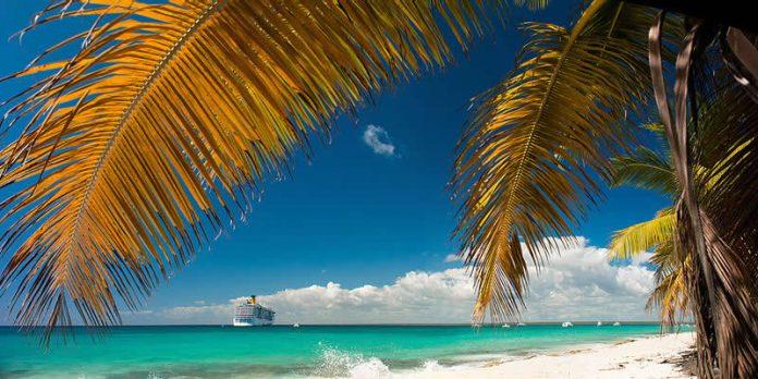 Catalina Island - La Romana - Dominican Republic - cruise ship near the shore with a palm