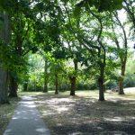 Kyneton-Botanical-Gardens-day-trip-MelbourneWP_20170326_14_45_47_Pro__highres_e