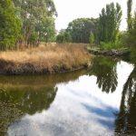 Kyneton-Botanical-Gardens-day-trip-MelbourneWP_20170326_14_51_22_Pro__highres_e