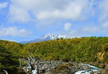 Mahuia River Rapids on the Whakapapanui Stream, Tongariro National Park, New Zealand