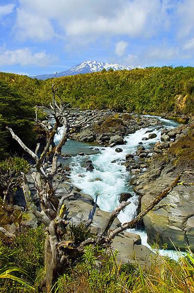 Mahuia River Rapids on the Whakapapanui Stream, Tongariro National Park, New Zealand