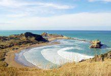 Travel - Castle Point Bay - Wellington - New Zealand