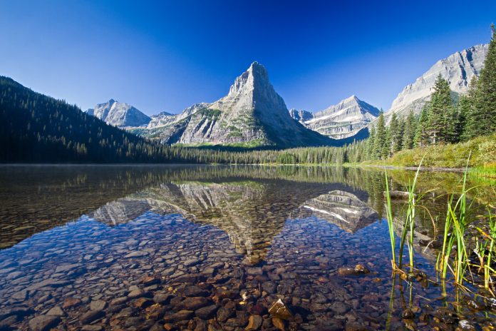 Glenns Lake as seen from the Glenns Lake Head campground in Glacier National Park, Montana, United States